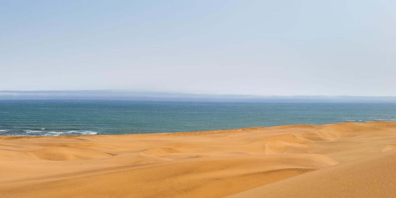 砂上感想イメージイラスト