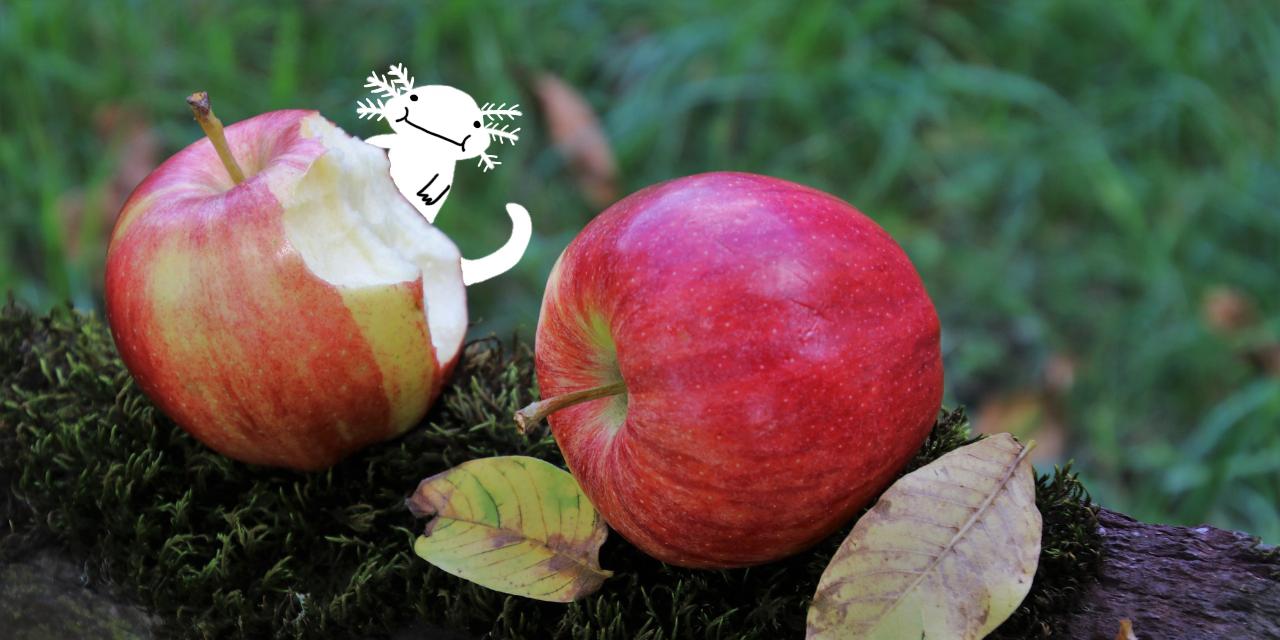 りんごがひとつ感想イメージイラスト